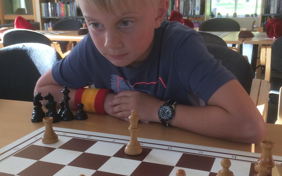 Sommer-sjakk